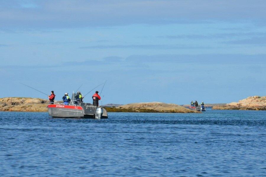 Om turistfisket