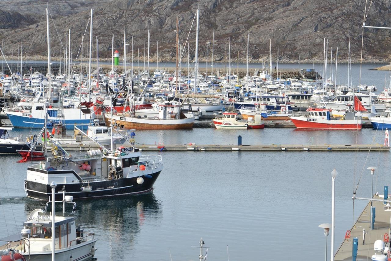 Bærekraftig sjømatnæring